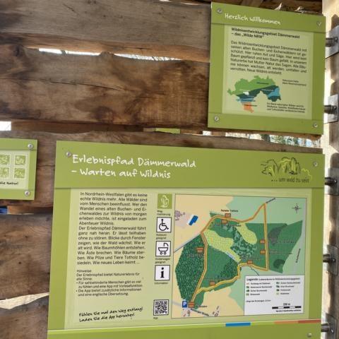 Naturpfad Dämmerwald Schermbeck Draußen zu Hause Kinder unterwegs Freizeittipp Moers