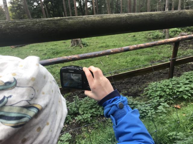 Tiergehege Mechernich Tiere Ausflugsziel Freizeittipp NRW Familie